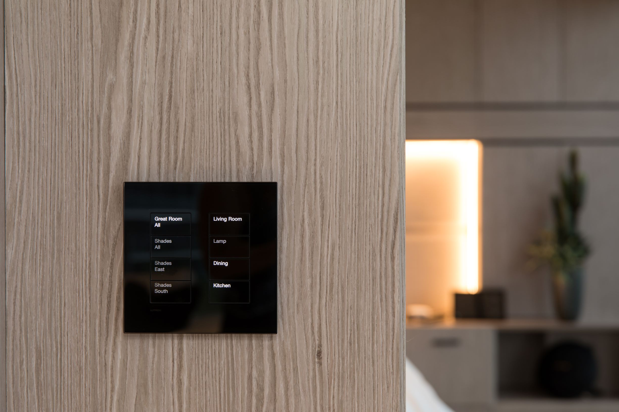 Lutron Palladiom Glass Keypad in Black